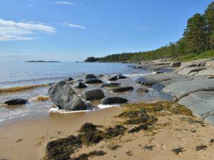Белое море: Тур в Архангельск из Иваново
