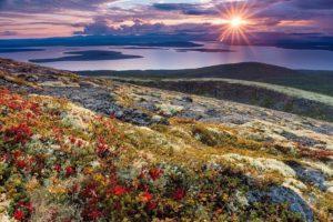 Арктика: через Лапландию к Ледовитому океану